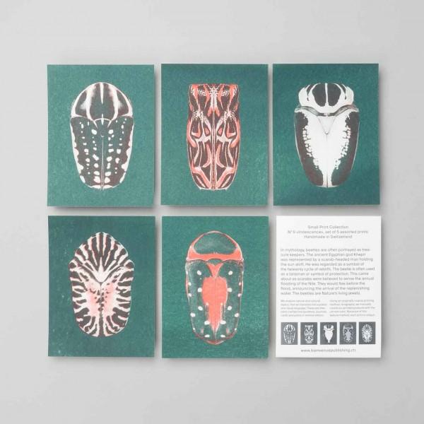 "Bienvenue Publishing Karten Set ""Iridescence"""