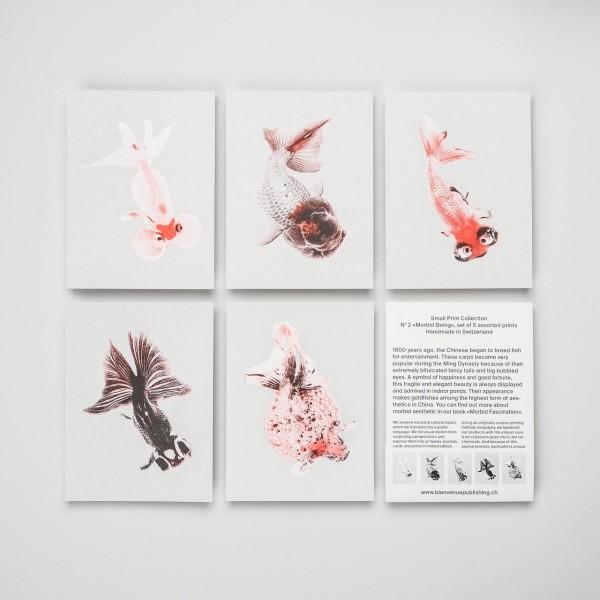 "Bienvenue Publishing Karten Set ""Morbid Being"""